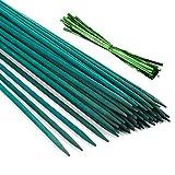 Pllieay 30 Varillas de bambú Verde de 30 cm con 60 Lazos metálicos Verdes, estaca de Madera Verde para Plantas, púas Florales, letreros de Madera para Poste de jardín, Varillas para Plantas