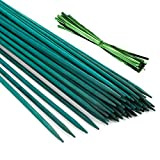 Pllieay 30PCS Bastoncini di bambù verdi da 12 pollici con 60 pezzi di legami metallici ve...