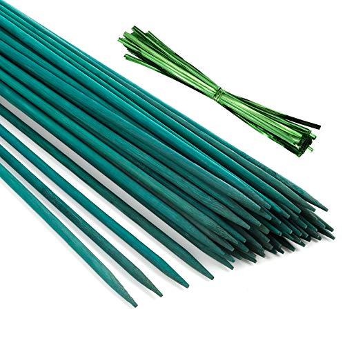 Pllieay 30 Varillas de bambú Verde de 12 Pulgadas con 60 Lazos metálicos Verdes, estaca de Planta Verde, púas Florales, Letrero de Madera para Poste de jardín, Varillas de Planta, estaca de Pl
