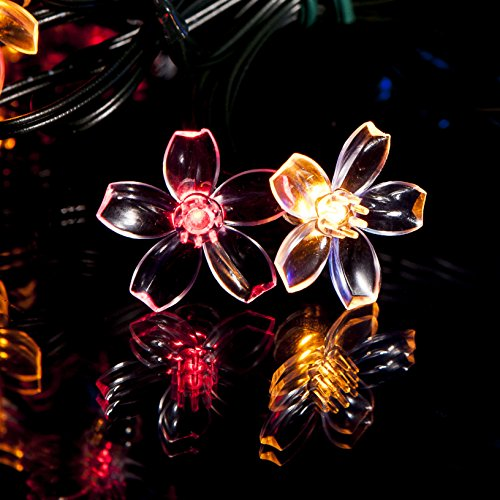 50 Multi-colour LED Flower Blossom Solar Powered Fairy Lights - Waterproof Solar Decoration String Lights with Built-in Night Sensor - for Christmas, Outdoor, Garden, Fence, Patio, Yard, Walkway, Driveway, Shed, Garage, Path, Ornament, Stairs and Outside by SPV Lights: The Solar Lights & Lighting Specialists (Free 2 Year Warranty Included)