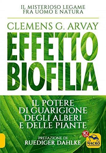 Effetto biofilia. Il potere di guarigione degli alberi e delle piante