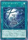 遊戯王/第10期/DP21-JP032 ブラック・ガーデン