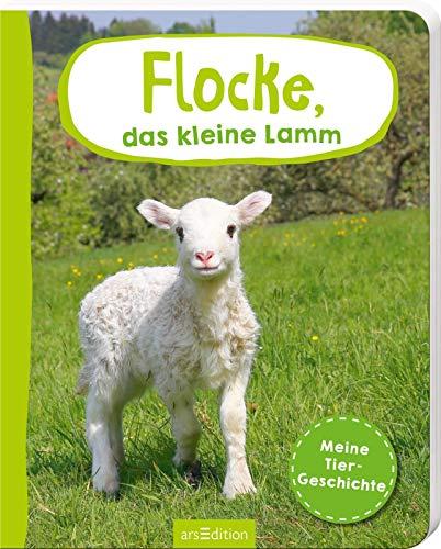 Erste Fotogeschichte: Flocke, das kleine Lamm: Meine Tiergeschichte