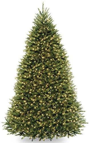National Tree Company Pre-lit Artificial Christmas Tree | Includes Pre-strung Multi-Color LED Lights and Stand | Dunhill Fir - 9 ft