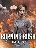 Burning Bush: Part 3 (English Subtitled)