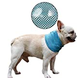 DELIFUR 2 Pcs Dog Instant Cooling Scarf