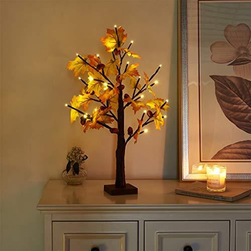 EAMBRITE 60cm Leuchtbaum Innen Ahorn Lichtlampe Schreibtischbaum Dekorativ 24 LED Lichterbaum Warm Weiss Weihnachten Dekobaum für Zuhause, Party, Geburtstag, Hochzeit