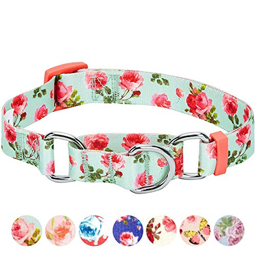 Blueberry Pet 7 Patterns Spring Scent Inspired Rose Print Safety Training Martingale Dog Collar, Turquoise, Medium, Heavy Duty Adjustable Collars for Dogs