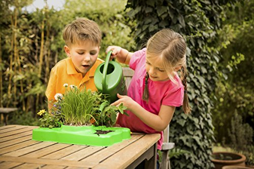 Thames & Kosmos Thames and Kosmos 567004 Botany, Learn About Plants and Seeds, Specially Designed Greenhouse Domes, 30 Experiments, 41 Pieces, Ages 5-7, Multi
