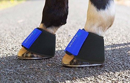 Shires ARMA - Stivali in neoprene sopra portata Cob, colore: Blu reale