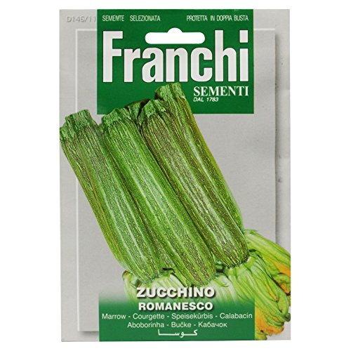 Seeds of Italy Ltd Franchi Courgette Romanesco