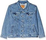 Levi's Plus Size Pl Ex-Boyfriend Trucker Chaqueta vaquera, Blue (Soft As Butter plus 0006), XXX-Large para Mujer