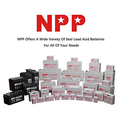 NPP Deep Cycle Golf Cart Battery