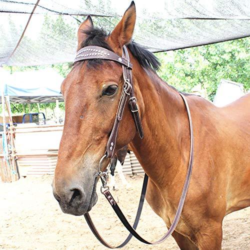Trense Ohne Gebiss Pony,Trensen Für Ponys,Lederzügel,Robuste und Verschleißfeste,Hochwertige Legierungsschlingen, Größenverstellbar Für Pferde Aller Größen,Darkbrown-Cob