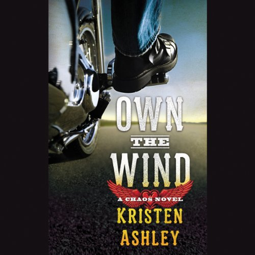 Own the Wind audiobook cover art