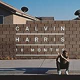 18 Months [Vinilo]