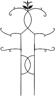 Achla Designs FT-02 Tendrils II Plant Support Metal Garden Trellis, 48 x 84, Black