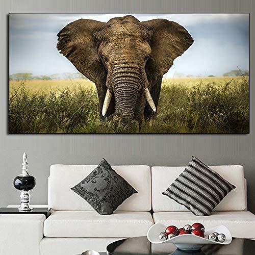 ganlanshu Elefantes africanos Lona Fauna Carteles e Impresiones Murales de la Sala Fotos Pintura sin Marco 60cmX120cm: Amazon.es: Hogar