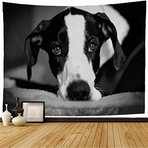 Tapiz de Pared Tapestry Perro gran danés animal descansa sobre sus animales interiores de vida silvestre manto canino negro mascota descansando Wall Hanging 80X60inch