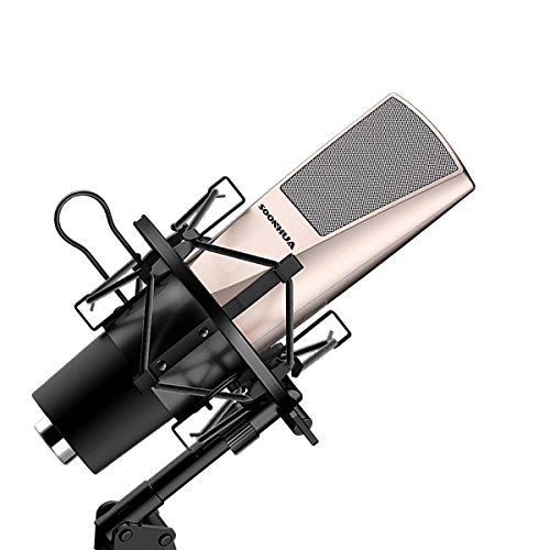 Professional Condenser Microphone, Home Studio Recording Anchor Microphone with Mount stand & Anti-wind Cap for Computer PC Laptop Desktop Phone Interview Online Chatting Podcasting Youtube