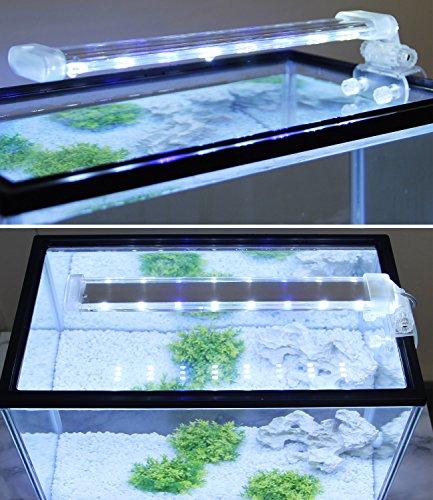 BPS® Lampe d'aquarium LED submersible pour plantes, lumière blanche et bleue, 2 modèles au choix : 4 W ou 8 W.