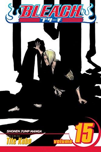 Bleach Volume 15