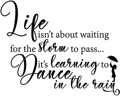 My Vinyl Story Life Isnt About Waiting for The Storm to Pass Its Learning to Dance in The Rain product image
