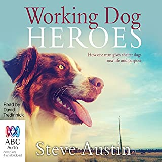 Working Dog Heroes     How One Man Gives Shelter Dogs New Life and Purpose              By:                                                                                                                                 Steve Austin                               Narrated by:                                                                                                                                 David Tredinnick                      Length: 9 hrs and 24 mins     2 ratings     Overall 5.0