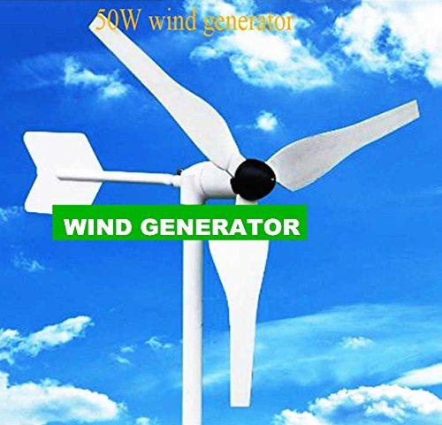 Gowe 50W Bj in Gleichrichter DC 12V oder 24V Ausgang Wenig Wind Generator Sets Einfach, um weniger als 3kg gute Wind Turbine Design