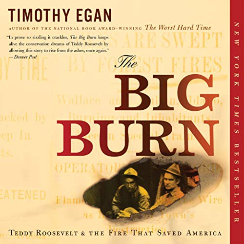 The Big Burn  By  cover art