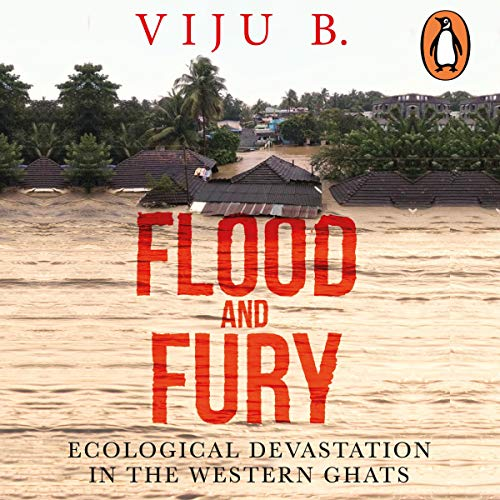 Flood and Fury cover art