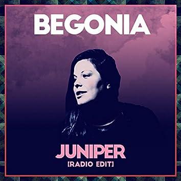 Juniper (Radio Edit)