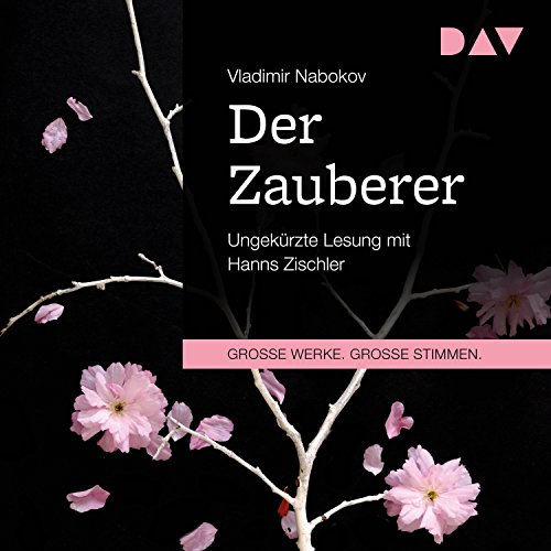Der Zauberer cover art