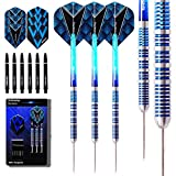 Professional Darts Review and Comparison
