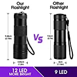 (2 Pack) UV Torch, Fulighture Pets Black Light 12LED 395nm, Dogs/Cats Urine Detector, Ultraviolet Flashlight Find Dry Stains on Carpets/Rugs/Floor with Batteries Included 10