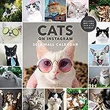 Cats on Instagram 2020 Wall Calendar