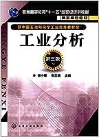 工业分析(张小康)(第三版)