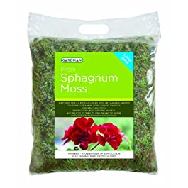Gardman 04105 Fresh Sphagnum Moss-Large Pack, Green, 14 x 23 x 31 cm