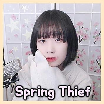 Spring Thief