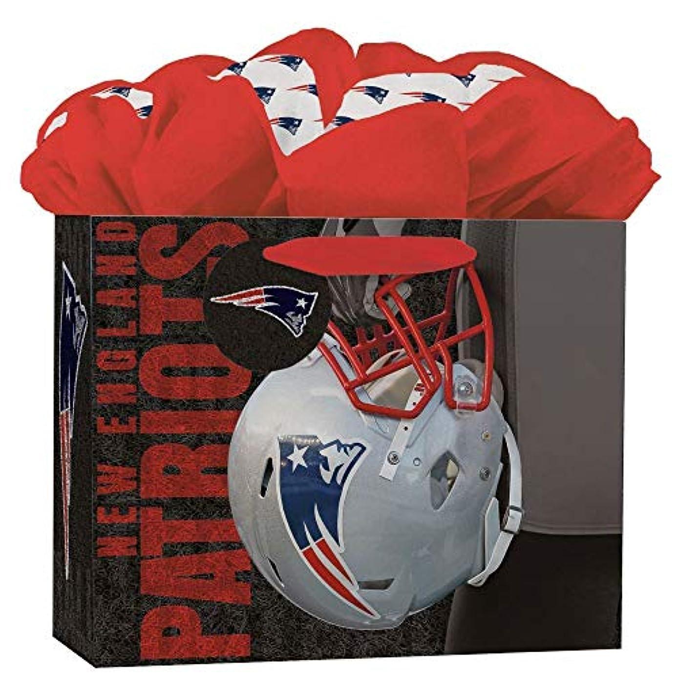 Turner Licensing New England Patriots Medium GoGo Gift Bag (8932013)