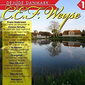 Dejlige Danmark Vol. 1