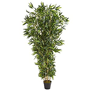 Nearly Natural 6-Ft. Bamboo Artificial (Real Touch) UV Resistant (Indoor/Outdoor) Silk Trees, Green
