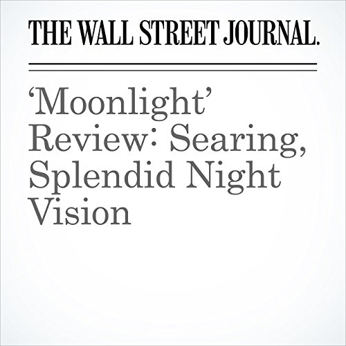'Moonlight' Review: Searing, Splendid Night Vision audiobook cover art