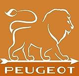 Peugeot Set Paris Chef Pfeffermühle + Salzmühle USelect Edelstahl 22 / 18 cm - 5
