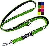 DDOXX Hundeleine Air Mesh, 3fach verstellbar, 2m | für kleine & große Hunde | Doppel-Leine Zwei Hund Katze Welpe | Schlepp-Leine groß | Führ-Leine klein | Lauf-Leine Welpen-Leine | Grün, XS