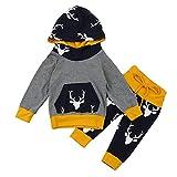 Sunenjoy 0-18 Mois Bébé Garçon Fille Vêtements Ensemble Long Manchon Cerf Capuche Tops + Pantalon Tenues (Gris,9-12 Mois)