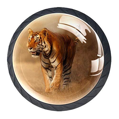 TIZORAX Schubladenknöpfe, Tiertiere, Tiger in Habitat, rund, Küchenschrankgriff, 4 Packungen für Schrank, Kommode, Tür, Heimdekoration