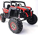 Powerwheel TV Screen XMX603 Ride ON UTV Buggy 24v Kids Ride On Car with Remote Control RZR