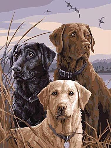 DIY pintura al óleo de lienzo Tres perros en la pradera - Pintura por Números La pintura al óleo artística de bricolaje sobre lienzo es un regalo de creatividad - 40 x 50 CM (Sin Marco)