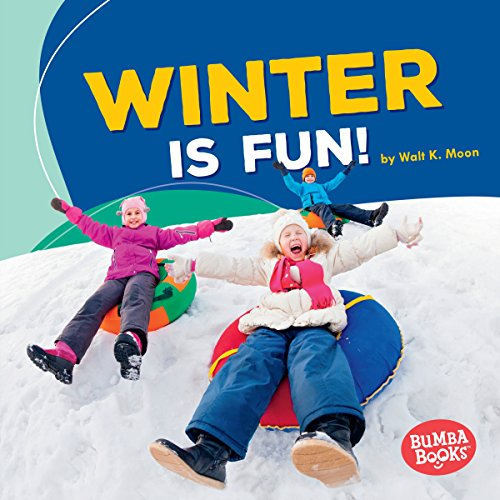 Winter Is Fun! copertina